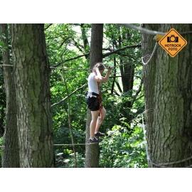 Vysoké lanové překážky - opičí dráha