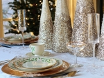 Vánoční firemní večírek