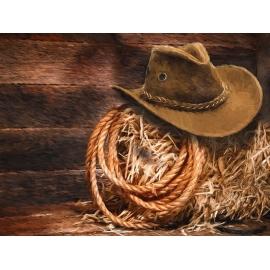 Vánoční westernový večírek