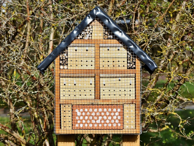 Stavba hmyzích hotelů - teambuilding