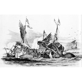 Treasure Hunt Máchovo jezero